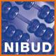 1ict-NIBUD.jpg